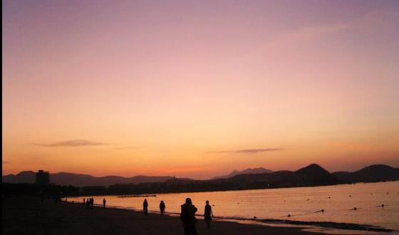 南山一棵树夕阳照片