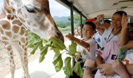 杭州野生动物园类别:野生动物园地点:杭州市杭富路九