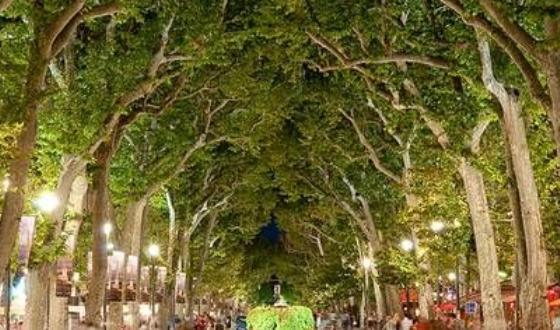 米拉波林荫大道在艾克斯有一条全法国最漂亮的 高清图片