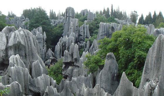 2013三衢石林风景区门票