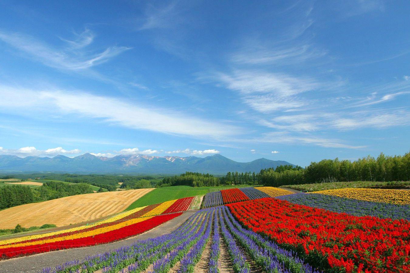 世界上最美的72个地方——普罗旺斯