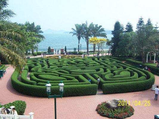 酒店建筑外景   绿篱迷宫
