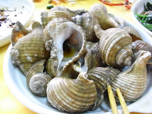 海螺 食用部位图解
