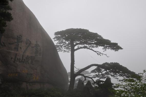 青岛出发黄山,千岛湖,杭州,西塘,苏州8日自驾游