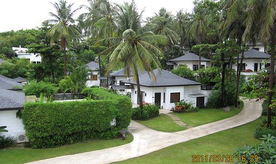 刮风的时候椰子树会掉下大树叉,听说还有椰子砸到客人.