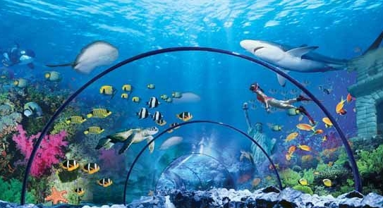 宁波海洋世界